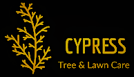 Cypress Tree & Lawn Care